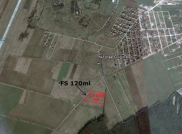 Vand 22.800mp teren Grigorescu - Nojoridului intre aeroport si padure - imaginea 1