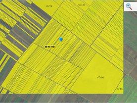 Teren agricol de vânzare, în Berceni
