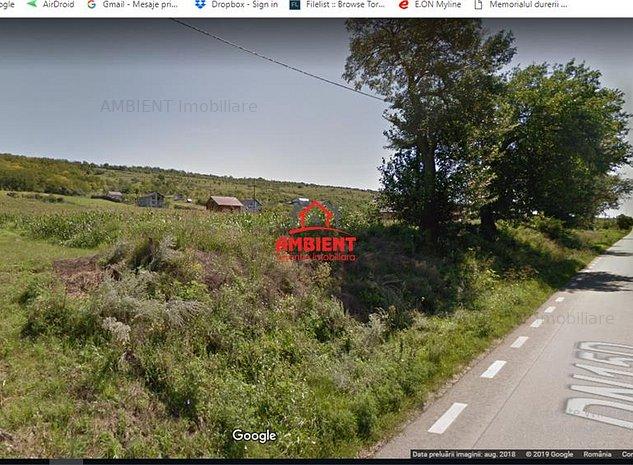 Teren 5000 mp Ciusmeaua Moldovencei; (*177) - imaginea 1