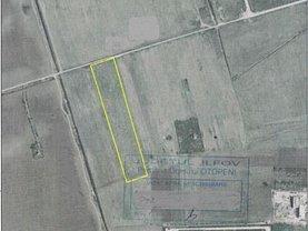 Teren agricol de vânzare, în Otopeni, zona Central