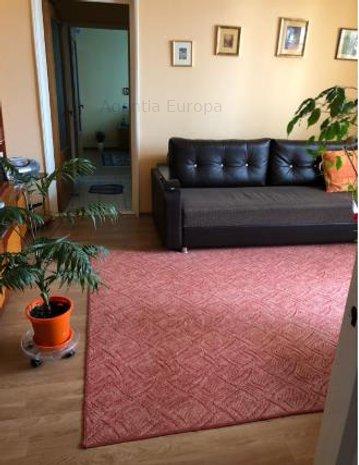 Apartament 2 camere zona Big - imaginea 1