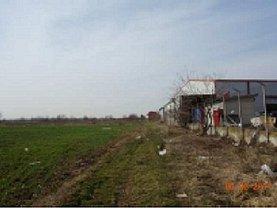 Teren agricol de vânzare în Afumati