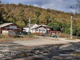 Vânzare hotel/pensiune în Conop