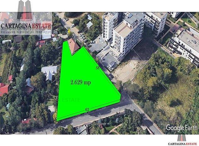 Iancu Nicolae 2.629 mp - imaginea 1