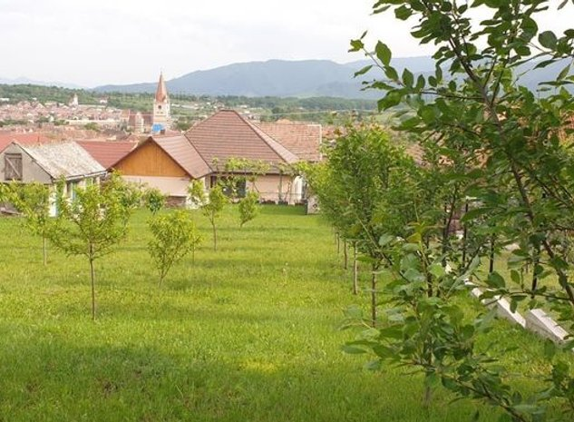 EXCLUSIVITATE | Casa individuala cu 1000 mp teren in Cisnadie - imaginea 1