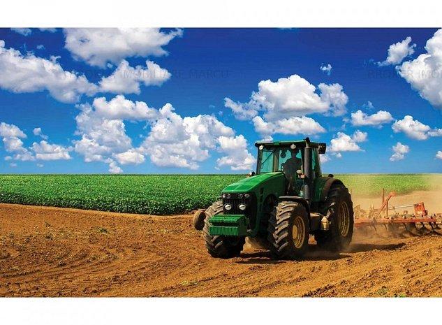 Teren agricol Topraisar - imaginea 1