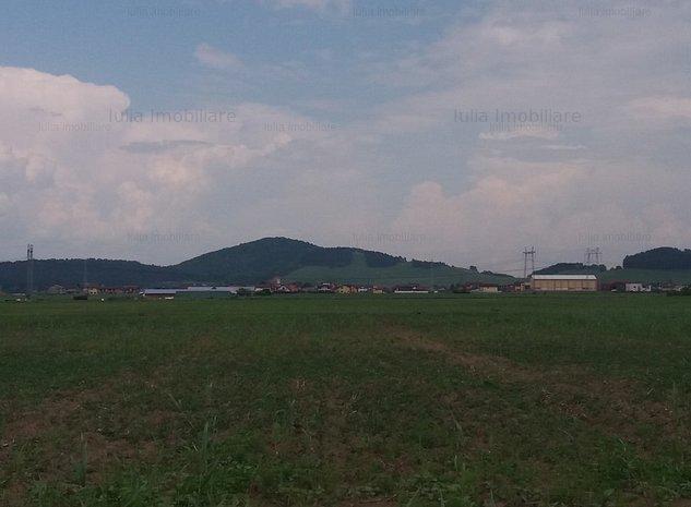 teren sanpetru sere - imaginea 1