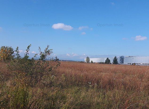 Vanzare teren Parc Industrial Ploiesti - Depozit LIDL - imaginea 1