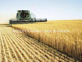 Teren agricol de vânzare în Baneasa