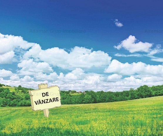Vanzare teren 368mp, Bucurestii Noi- 2 Cocosi - imaginea 1