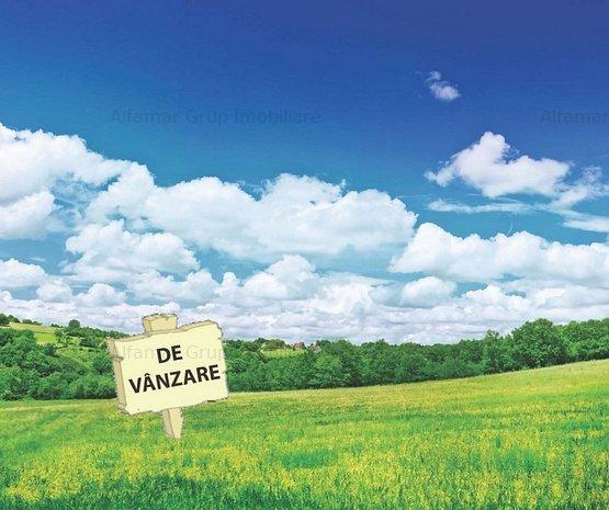 Vanzare Spatiu Industrial Zona Glina- Popesti Leordeni - imaginea 1