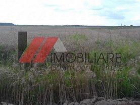 Teren agricol de vânzare, în Bucovat (Remetea Mare)