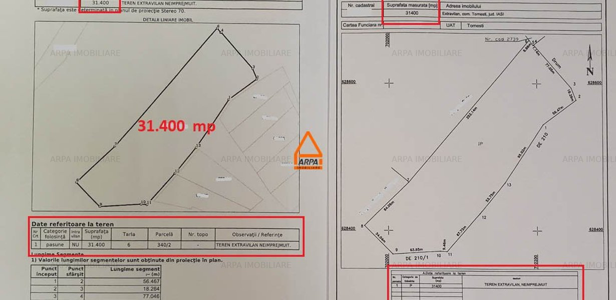 Teren Intravilan - 5.145 mp - Tomesti - imaginea 4
