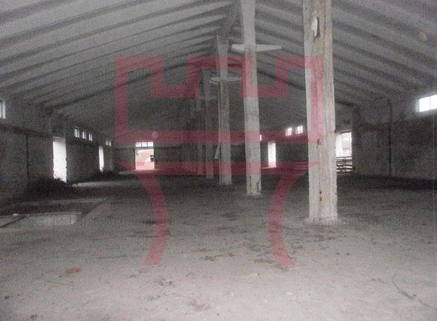 Vanzare 9 hale depozitare sau productie in Bontida - imaginea 1