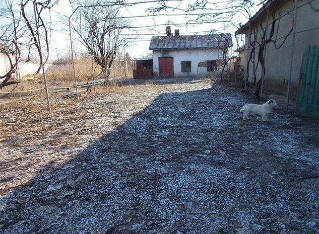 Vanzare teren intravilan in Serdanu, com. Lunguletu CS115 - imaginea 1