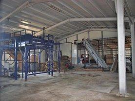 Vânzare spaţiu industrial în Geamana
