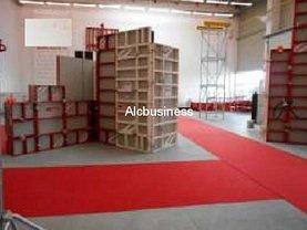Vânzare spaţiu industrial în Chitila, Exterior Nord