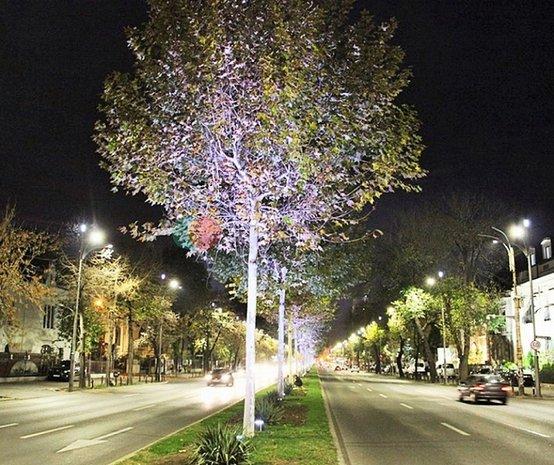 Piata Victoriei - Romana | Langa Metrou | 100 mp utili | Parfum Interbelic - imaginea 1