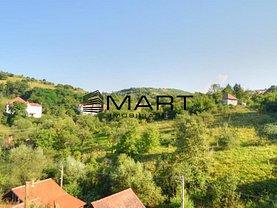 Casa de vânzare 4 camere, în Miercurea Sibiului