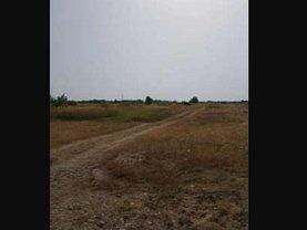Licitaţie teren  constructii, în Moşniţa Nouă