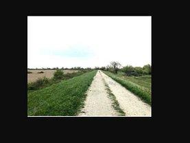 Licitaţie teren  agricol, în Moşniţa Nouă