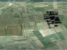 Teren agricol de vânzare în Tarlungeni