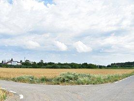 Teren agricol de vânzare, în Ciolpani