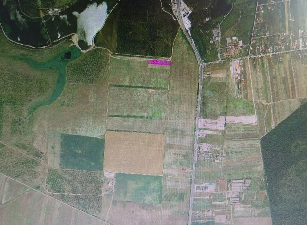 Vanzare Teren Tancabesti, 4.435 mp, Snagov Plaza, comision 0% - imaginea 1