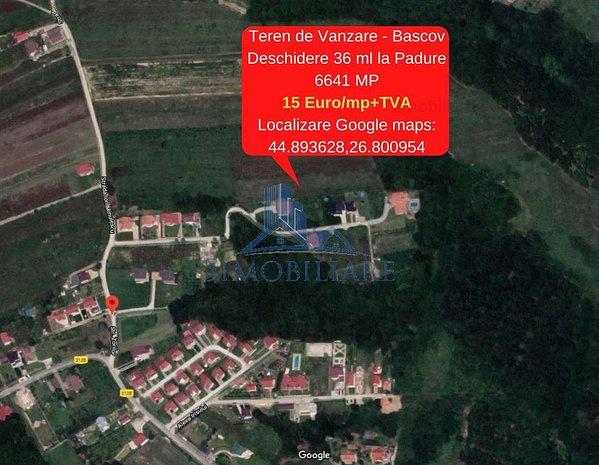 Bascov- Teren de Vanzare cu Deschidere la Padure- 6641 MP, 15 Euro/mp - imaginea 1