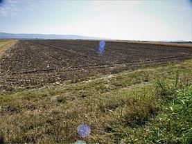 Teren agricol de vânzare, în Nicolae Bălcescu