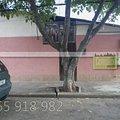 Casa de vânzare 5 camere, în Bucuresti, zona 23 August (Catelul)