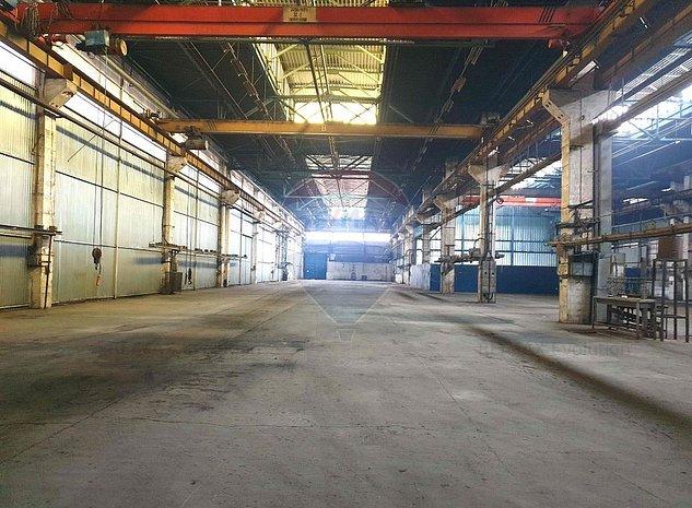 Hale productie si depozitare Tractorul, Brasov - imaginea 1