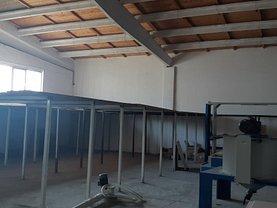 Vânzare spaţiu industrial în Ovidiu