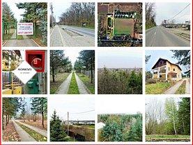 Vânzare imobil 7 camere + teren 6085mp în Snagov
