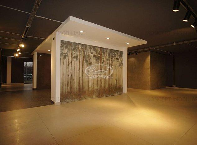 Spatiu Comercial ideal showroom, in Buna Ziua - imaginea 1