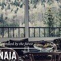 Casa de vânzare 12 camere, în Sinaia, zona Castelul Peleş