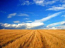 Teren agricol de vânzare, în Fundulea, zona Central