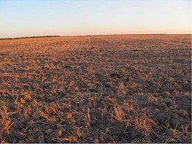 Licitaţie teren agricol, în Oradea, zona Aeroport