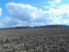 Licitaţie teren agricol, în Botosani, zona Dragos Voda