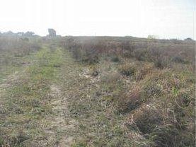 Licitaţie teren agricol, în Sanmartin