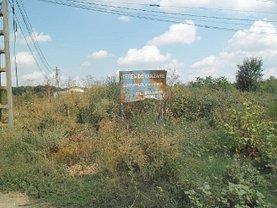 Licitaţie teren constructii, în Sinesti