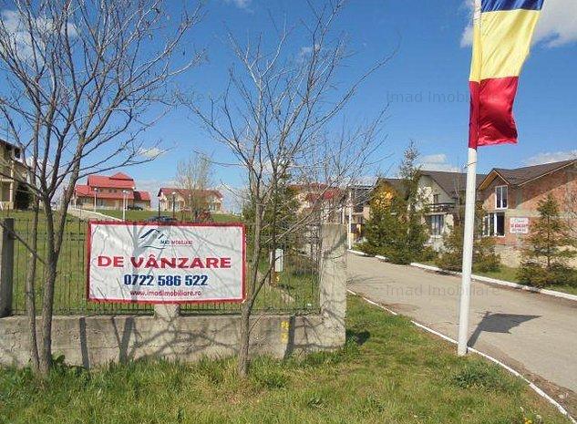 Vanzare Vila la cheie - Priseaca - imaginea 1