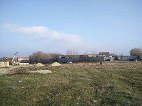Licitaţie teren livada, în Albota