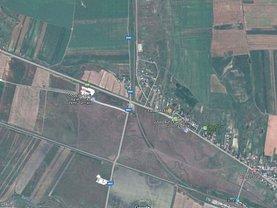 Licitaţie teren agricol, în Dumesti