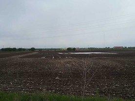 Teren agricol de vânzare în Tancabesti