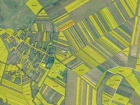 Teren agricol de vânzare în Santaul Mare