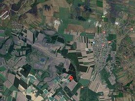Licitaţie teren agricol, în Oradea, zona Episcopia Bihorului