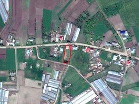 Licitaţie teren agricol, în Targu Frumos