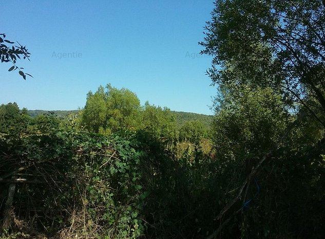 ID:10362: Teren agricol, Valea Ursului - imaginea 1