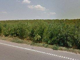 Teren agricol de vânzare, în Ghimpati